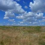 beldzhamen-gorod-kotorogo-net