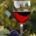 marshrutami-burgundskogo-vina