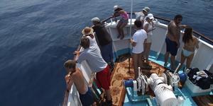 Как бороться с морской болезнью в поездках?