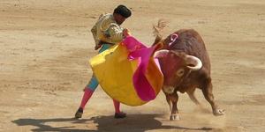 Коррида: испанский бой быков