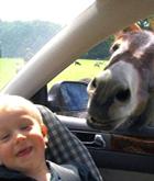 Чем занять ребенка в машине?