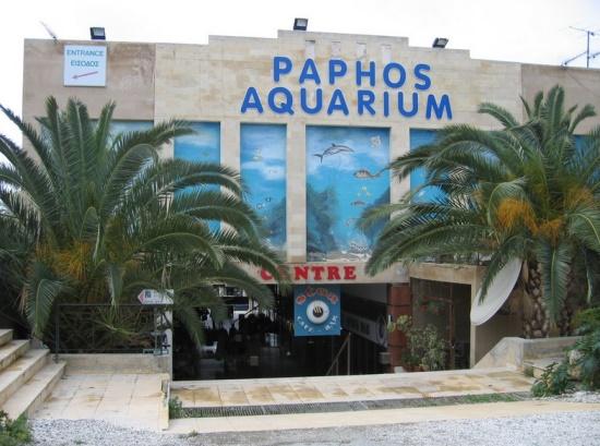 Аквариум Пафоса на Кипре