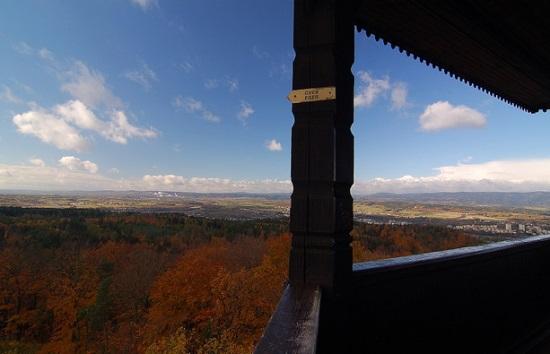 Вид со смотровой башни