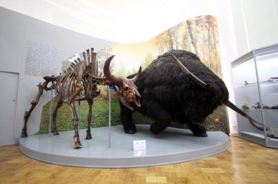 Бизон и мамонт, им 400 тысяч лет