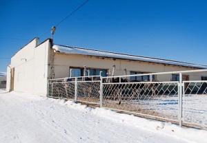 Страусиная ферма в Серпуховском районе