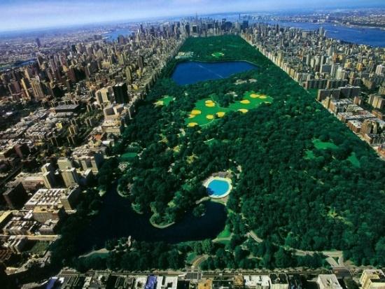 Центральный парк в центре Манхеттена
