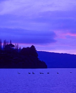 Озеро Таравера в Новой Зеландии вечером