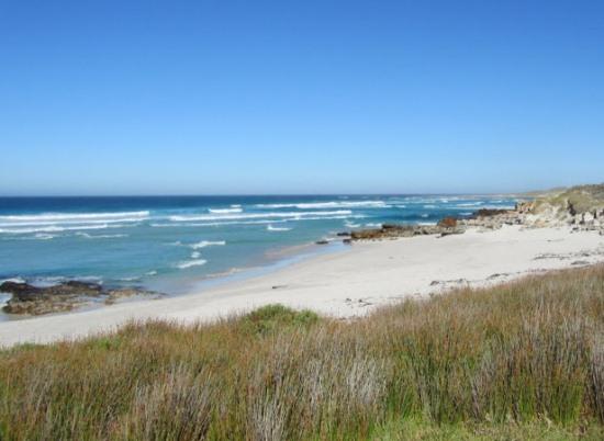 Пляж заповедника Мыса Доброй Надежд